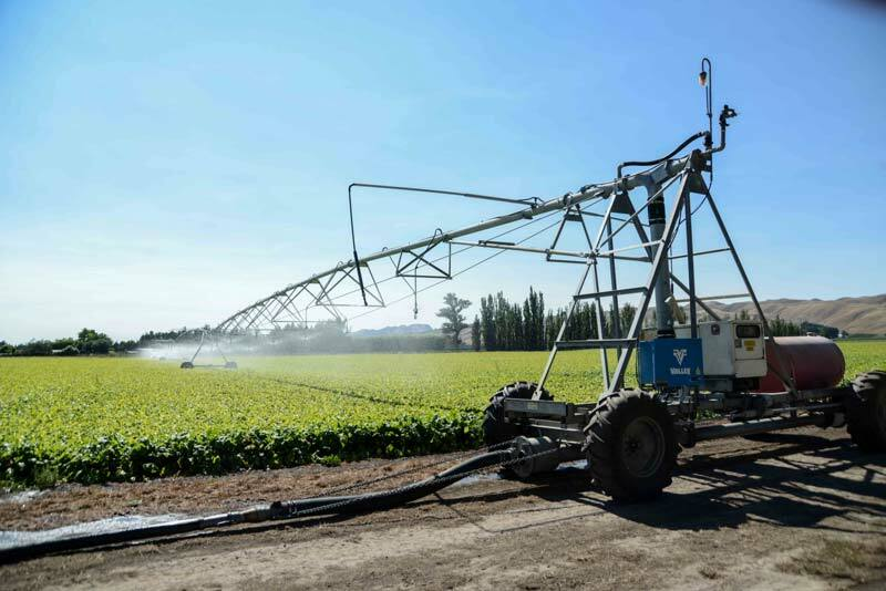 Linear irrigation