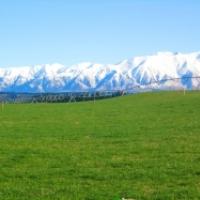 Canterbury Grasslands Ltd