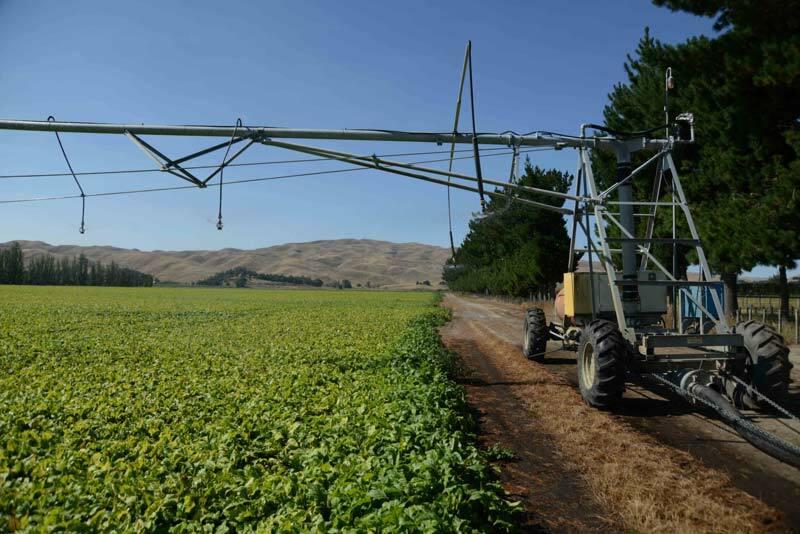 Linear Irrigation