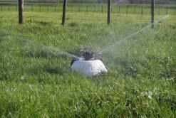 K-Line & Shiftable irrigation
