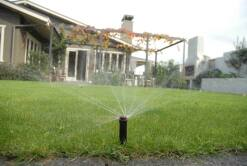 Pop-Up Sprinklers
