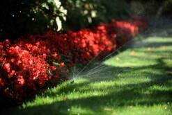 Pop-up Sprinklers