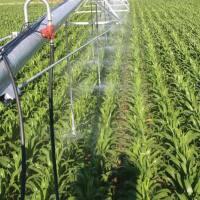 Irrigation Season is Underway