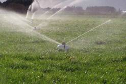 Residential & Commercial Irrigation Systems | Waterforce