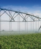 Pukekohe cropping company installs new centre pivot irrigation and fertigation system